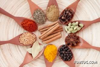 Spicy Remedies for all Diseases